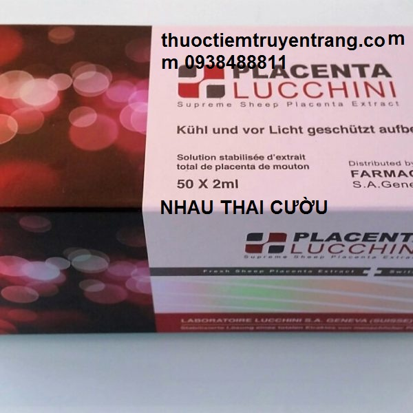 LUCCHINI SHEEP PLACENTA